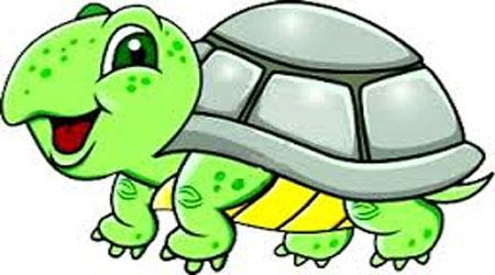 لاکپشت و جامدادی